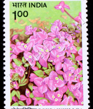BOUGAINVILLEA MAHARA COMMEMORATIVE STAMP