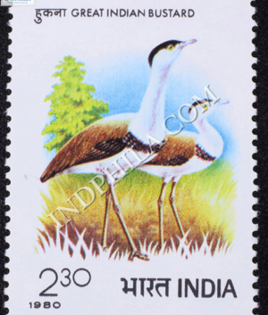 GREAT INDIAN BUSTARD COMMEMORATIVE STAMP