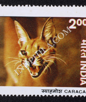INDIAN WILD LIFE CARACAL COMMEMORATIVE STAMP