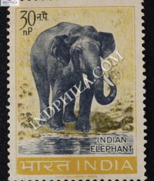WILD LIFE SERIES INDIAN ELEPHANT COMMEMORATIVE STAMP